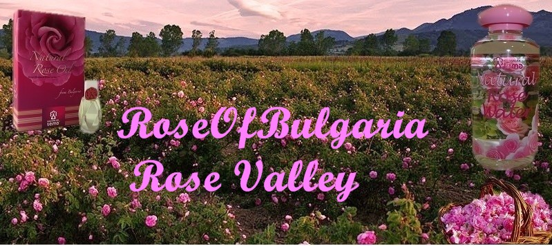 RoseOfBulgaria-Rose Valley